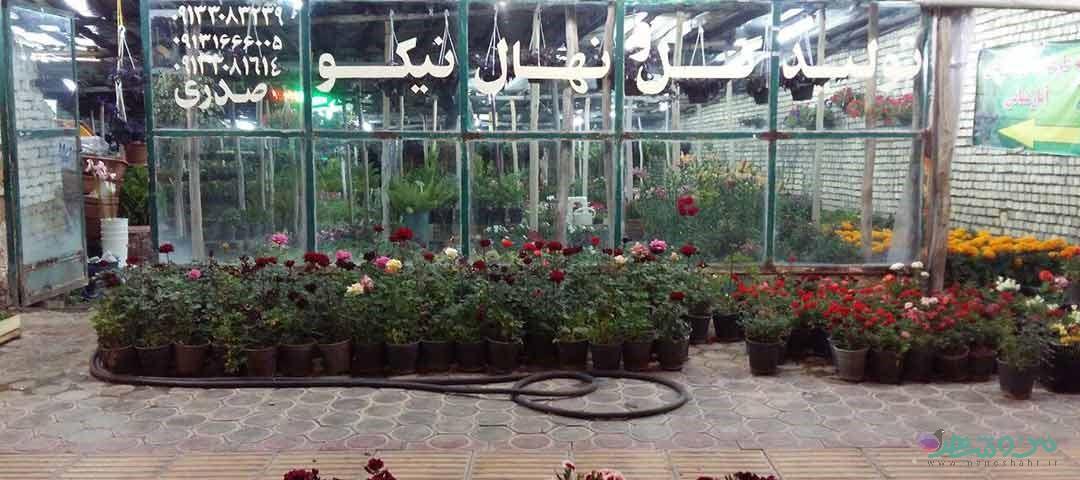 گل فروشی نهال نیکو اصفهان