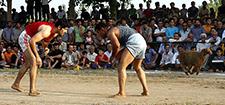 هیأت ورزش روستایی و بازی های بومی محلی اصفهان