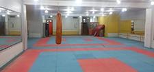 سالن رزمی مجموعه ورزشی باغ غدیر