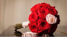 گل فروشی سروش