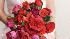 گل فروشی ناز