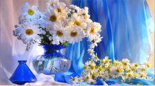 گل فروشی گلاره