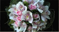 گل فروشی کاملیا | خیابان جابر انصاری