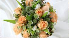 گل فروشی مزرعه