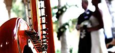 گروه ارکستر باران