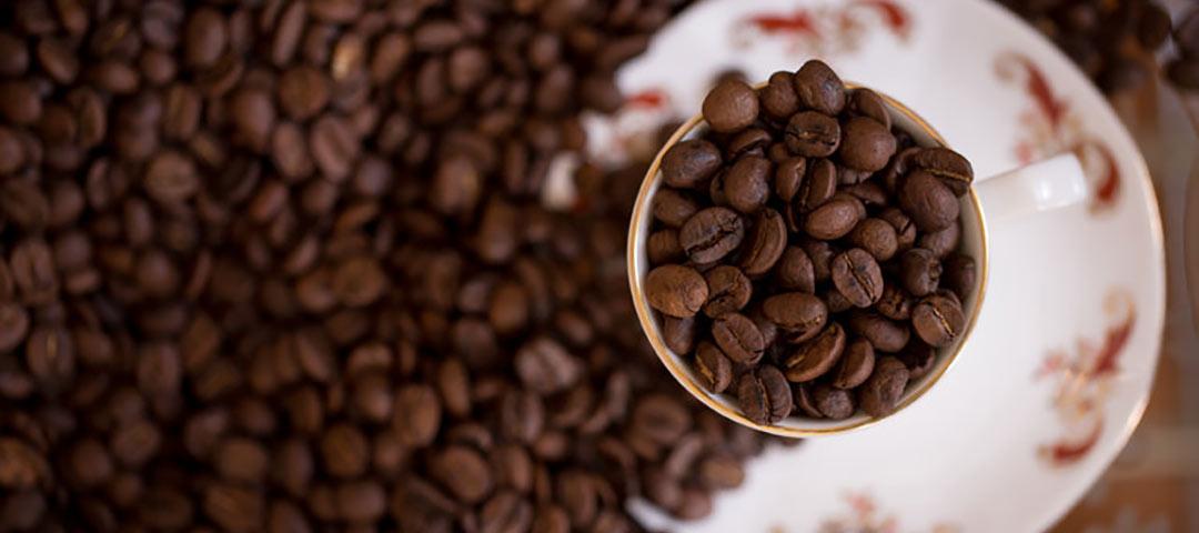 قهوه فروشی تورینو