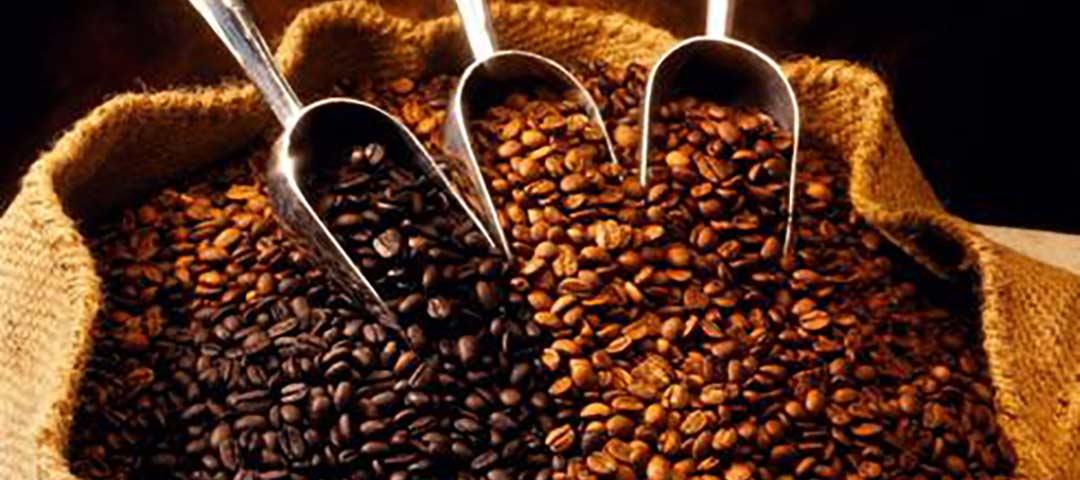 فروش قهوه هانی